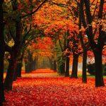 Huidverzorging tijdens de herfst